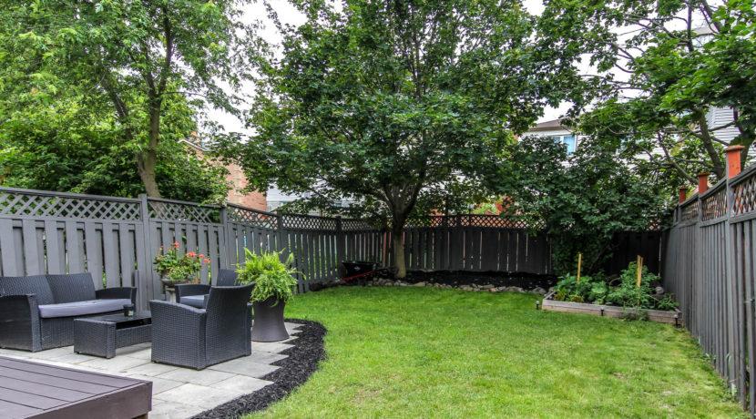 36_backyard1